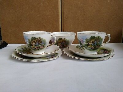 Royal Vale Country Cottage Trio X 2 Bone China +Sugar bowl. Used but conditions
