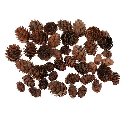50pcs Mixed Pinecone Pine Cones Vase Bowl Filler Christmas Home Decoration