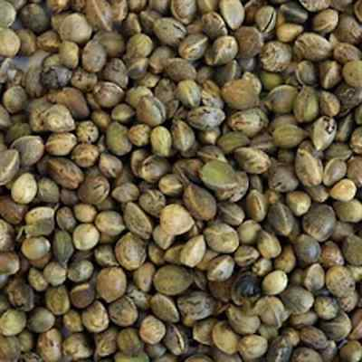 SMALL HEMP SEED'S - WHOLE - 950g - LOVED BY MOST BIRDS & CARP!