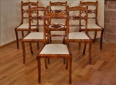 Antik Set 6 Stühle Knussmann Walnuss Biedermeier Chairs by Royal Cabinet Maker