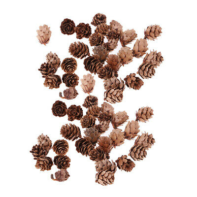 60x Real Natural Small Pine Cones in Bulk for Decoration Christmas Ornament