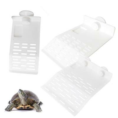 Turtle Pier Basking Platform Dock for Reptiles Amphibians Floating Island S U5N9