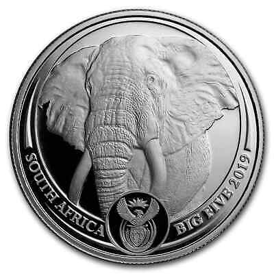 2019 South Africa 1 oz Platinum Big Five Elephant Proof - SKU#190284