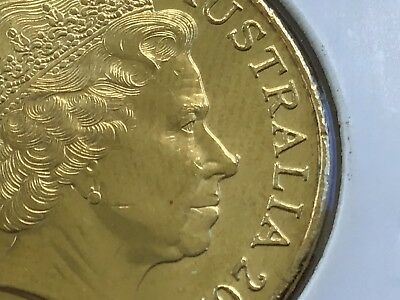 2016 Uncirculated Newly Discovered (Rhino) $1 Error Coin