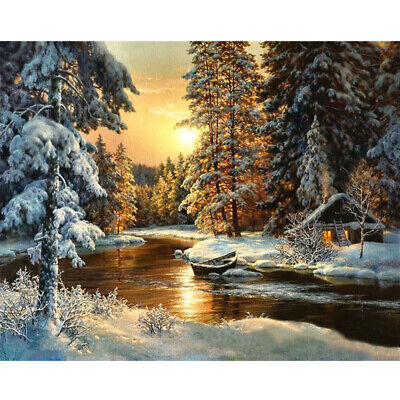 Sunlight Snow Forest Oil Painting Pictures Coloring By Digital Numbers No Frame