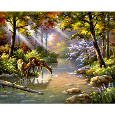 Forest Deer Oil Painting Pictures Coloring By Digital Numbers Canvas No Frame