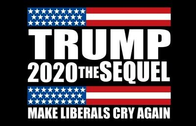 Trump 2020 Flag FREE SHIPPING 3X5Ft The SEQUEL Make Liberals Cry Again New Flag
