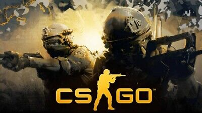 New Account with CS:GO PRIME STATUS (Counter Strike Global Offensive)