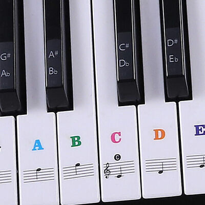 Keyboard Stickers or Piano Stickers up to 61 KEY keyboard for the Colorful keys