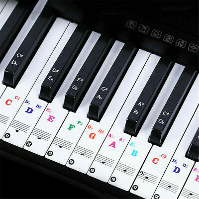 Color Piano Key Note Keyboard Stickers Label Decal Teach Learn to Play Music