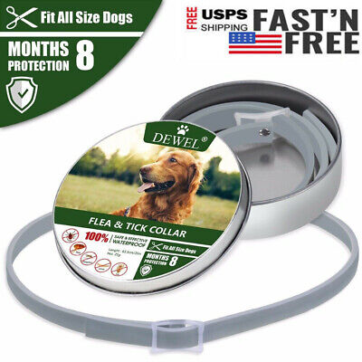 Dewel Pro Guard Flea and Tick Collar Small Medium Large Dogs 8 Month Protection