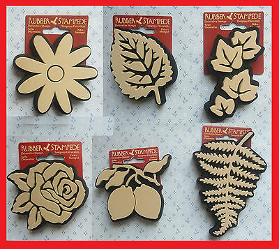 Rose, Daisy, Ivy, Aspen leaf, Lemons, Fern RUBBER STAMPS WALL ART, Crafts print