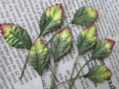 20 GREEN AUTUMN ROSE LEAVES 14mm width Wire Stem Mulberry Paper Craft R3Y
