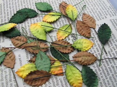 30 Rose leaves 12mm 3 seasons Color wire stem Mulberry Paper R30S1 Decoration