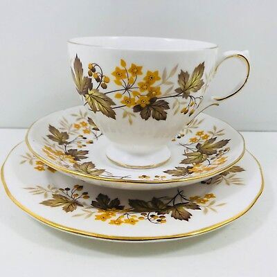 Lovely Vintage Royal Vale Autumn Pattern 8572 Tea Trio Cup Saucer Plate Set