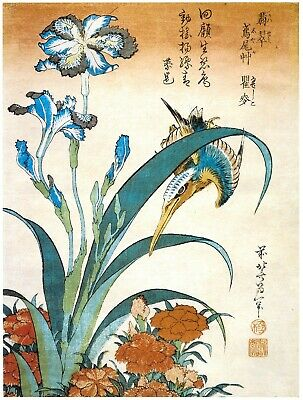 Set of 2 Japanese Bird Prints Repro Woodblock Pictures Kingfisher, Bullfinch A3