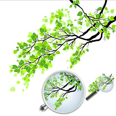 Fresh Frosted Green Leaf Branch Wall Mural Window Glass Art Stickers Home Decor