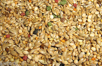 GOULDIAN BREEDERS SPECIAL FINCH SEED MIX - 2.5kg - AW BIRDS
