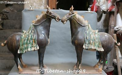 """20"""" Chinese Old Tang Sancai Porcelain Ancient Horse Horses Animal Pair Statue"""