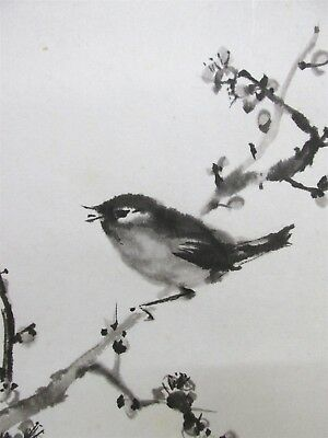 Antique Japanese Scroll Painting, Ume and Japanese Bush Warbler Art Old #17