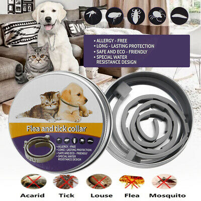Adjustable Anti Flea and Tick Neck Collar For Dog Cat Pet 6 Months Protection !