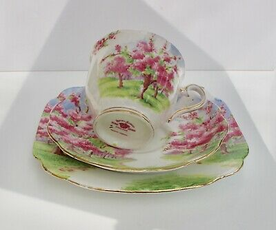 Vintage Royal Albert China Trio Cup Saucer & Plate Blossom Time