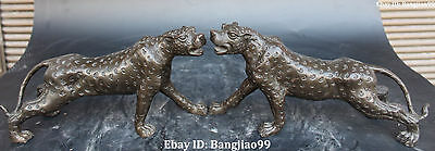 """11"""" Chinese Fengshui Pure Bronze Africa Leopard Panther Animal Pair Statue"""