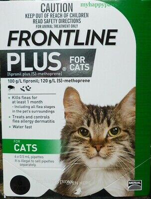 Frontline Plus For Cats 6 Months Pack Supply ALL WEIGHTS Green