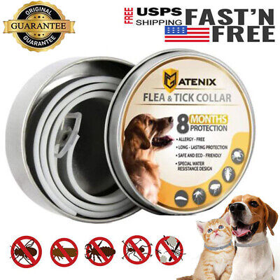 DEWEL PRO GUARD FLEA AND TICK COLLAR FOR MEDIUM LARGE DOG -Anti Insect Mosquito