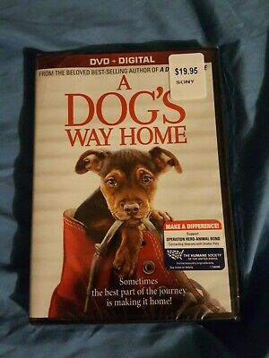 A Dog's Way Home (DVD,2019) NEW-Drama, Family-.