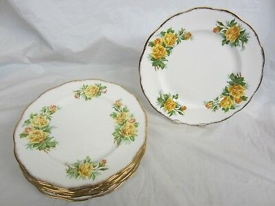 Lot of 8  Royal Albert Yellow Tea Rose Dinner Plates 10 and 1/4 inches