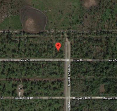 Indian Lake Estates Vacant Lot, Foreclosure Ready Now, No Reserve Listing,