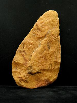 ANCIENT Quartzite HAND AXE - Acheulean Civilization - 13.5 cm LONG - Sahara