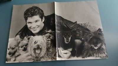 poster 2 pages  david hasselhoff ou cree summer
