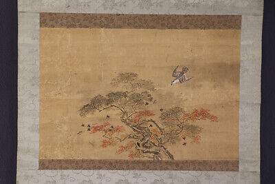 "JAPANESE HANGING SCROLL ART Painting ""Hawk"" Asian antique  #E7371"