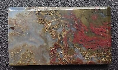 Agate paysage 74.9 carats - Natural moss agate Indonesia