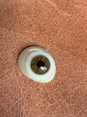 1910-1930s Prosthetic Glass Eye Vintage Antique Brown