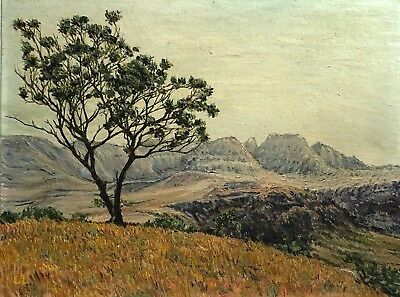 Vintage Signed C L Mountain Landscape Vista Study Original Painting On Board