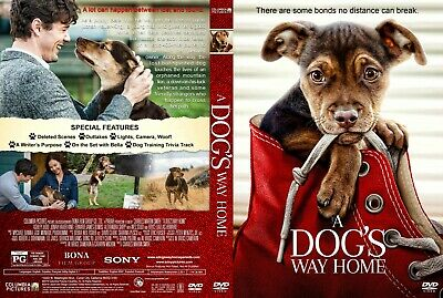 A Dog's Way Home(2019) DVD FAST SHIPPING!! READ DESCRIPTION