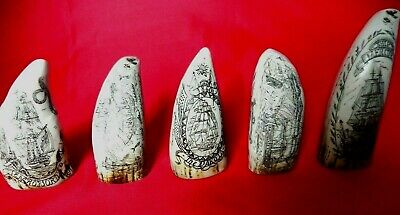 Five Miniature Collectable Teeth Faux Scrimshaw Museum Quality SRP £70