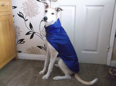 NEW ~ Lurcher/ large Whippet Showerproof/ rain coat ~ Blue, Red, Camouflage