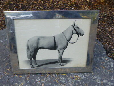 Signed Chinese Export Silver Picture Frame with Race Horse Photo