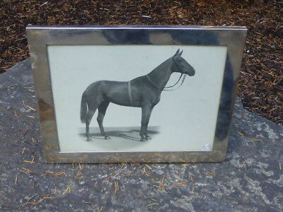 Signed Chinese Export Sterling Picture Frame with photo of  Horse - Captain Tim