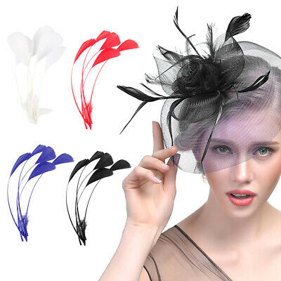 5PCs Stripped Coque Feather  Millinery Hats Feathers Trimmings Coloured Trim UK