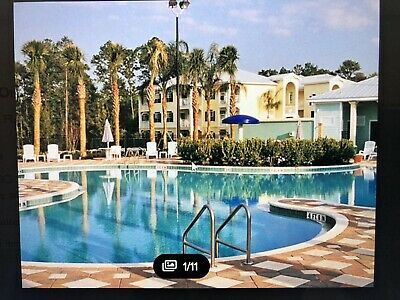 8 Day Orlando Florida Silver Springs Resort Vacation! Too good and too true!