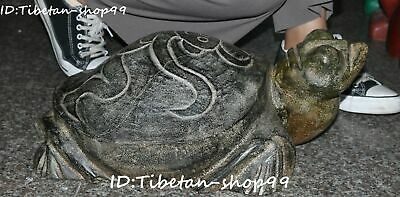 Unique Hongshan Culture Old Jade Fengshui Sun God Tortoise Turtle Animal Statue