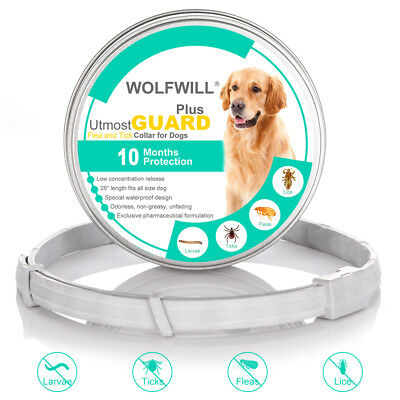 Upgrade 26'' Anti Flea & Tick Collar Natural Oil 10Month A+ Protection for Dogs