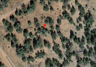 1.15 Acres, Located In Arizona, Pre-Foreclosure Listing, No Reserve, Huge Market