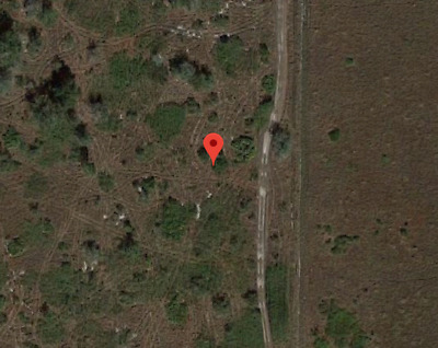 3.50 Acres Of Open Land, Foreclosure Ready Now, Nr Listing, Frostproof, Fl