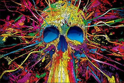 New Psychedelic Trippy Art Silk SKULL Fabric Poster Home Decor Wall 24x36in 2